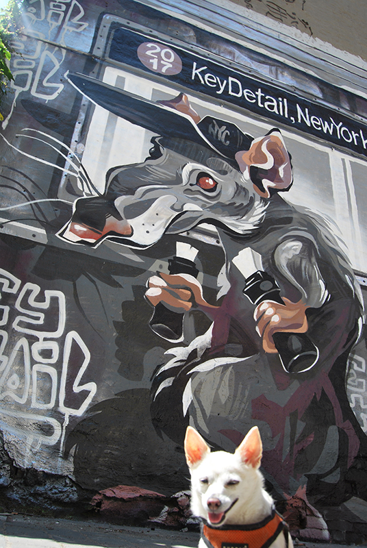 Click to enlarge image 5.jpg